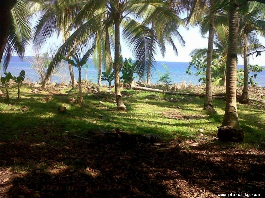 12 000 000 1 Hectare Beach Lot For Sale Beach Property