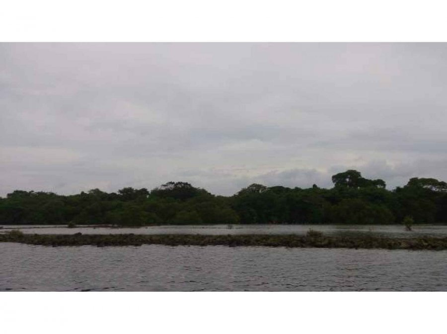 Beach Property For Sale In Pangasinan Philippines